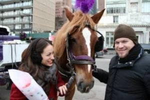 Horse Carriage Ride & Tours