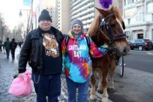Carousel tour, Horse Carriage Tours